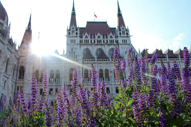 Parlamento ungherese - Travel Free From
