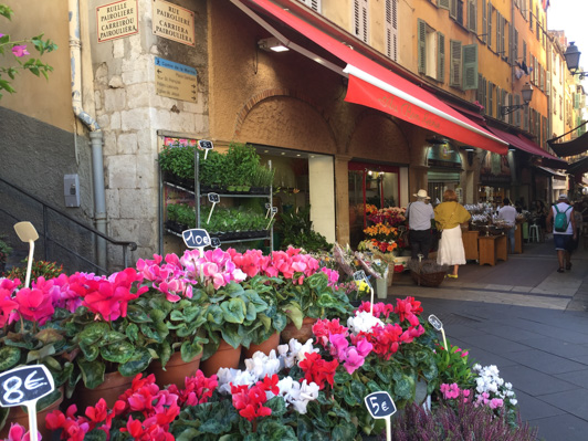 Bellezze di Nizza ruelle pairoliere - Travel Free From